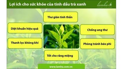 Lợi ích cho sức khỏe của tinh dầu trà xanh
