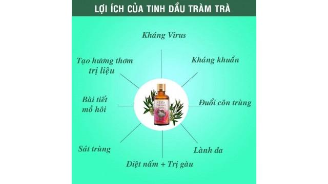 Lợi ích của tinh dầu tràm trà