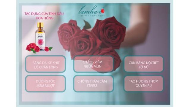 Tìm hiểu về tinh dầu hoa hồng