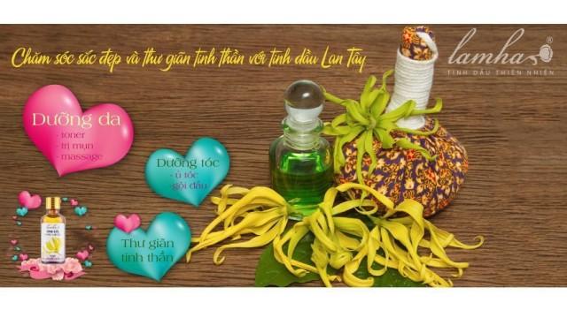 Chăm sóc sắc đẹp và thư giãn tinh thần với tinh dầu lan tây
