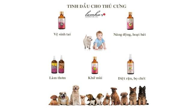 Một số cách sử dụng tinh dầu cho thú cưng