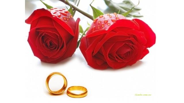 Hoa hồng và ý nghĩa của chúng